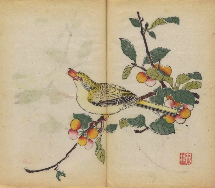 The Oldest Multicolored Printed Book