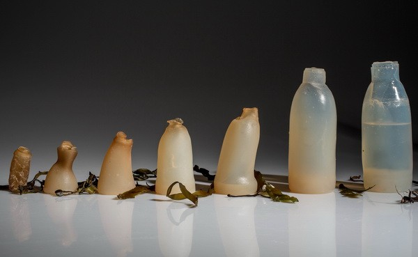 A really biodegradable bottle