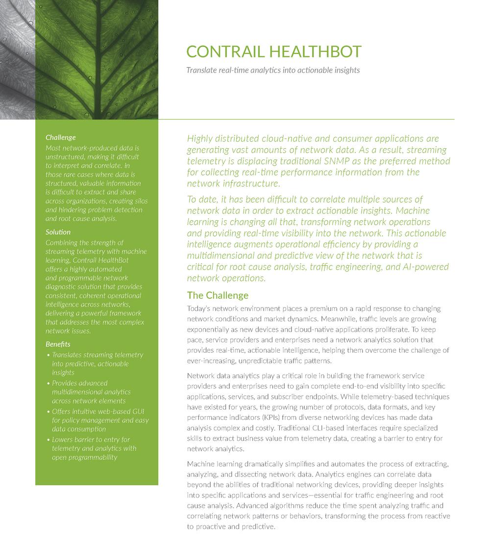It Brochure Translation (Analytics)